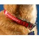 Niner Dog Collar