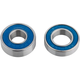Abi 6800 and 698 Sealed Bearing Set