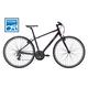 Liv Alight 2 Bike 2016