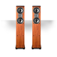 Polk Audio TSi300 3-Way Tower Speakers with Two 5-1/4