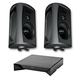 Definitive Technology AW 6500 All Weather Speaker With Bracket Package with W Adapt Wireless Streaming Adapter