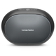 Harman Kardon Omni 50+ Wireless HD Indoor/Outdoor Speaker with Rechargeable Battery (Black)