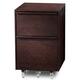 BDI Cascadia 6207 Mobile 2 Drawer File Cabinet (Espresso)