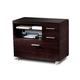 BDI Sequel 6017 Multifunction Cabinet (Espresso)