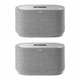 Harman Kardon Citation 500 Stereo Smart Speakers with Google Assistant - Pair (Gray)