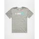 NIKE SB Block Mens T-Shirt
