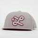 LRG Big L New Era Mens Snapback Hat
