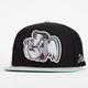 NEFF Heavy Hitters Mens Snapback Hat