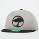 ARBOR Mens Snapback Hat