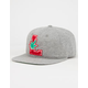 LRG Original Roots Mens Strapback Hat