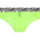 Zebra Band Mesh Panties