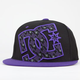 DC SHOES Hounded Mens Hat