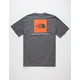 THE NORTH FACE Red Box Mens T-Shirt