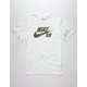NIKE SB Dri-FIT Shadow Icon Mens T-Shirt
