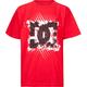 DC SHOES Webber Boys T-Shirt