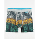 STANCE Liner Wholester Mens Boxer Briefs