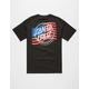 SANTA CRUZ Flagged USA Mens T-Shirt