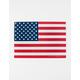 USA Flag Tin Sign