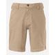 THE NORTH FACE Alderson Mens Shorts
