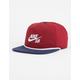 NIKE SB QT Dri-FIT Mens Snapback Hat