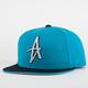 ALTAMONT The Wood Mens Snapback Hat