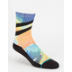 STANCE Chems Boys Socks