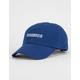 Team Mystic Dad Hat