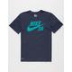 NIKE SB Dri-FIT Logo Mens T-Shirt