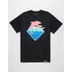 PINK DOLPHIN OG Waves Mens T-Shirt