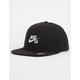 NIKE SB Icon Boys Snapback Hat