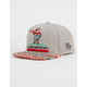 RIOT SOCIETY Native Party Bear Boys Snapback Hat