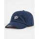 Just Slayin' Dad Hat