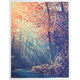 ANKIT Nature Photo Real Tapestry