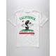 RIOT SOCIETY Surf Bear Cali Boys T-Shirt