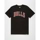 Chicago Bulls Mens T-Shirt