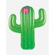 BIGMOUTH INC. Cactus Pool Float