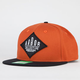 ARBOR Custom Mens Snapback Hat