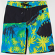 BILLABONG White Mike Platinum X Sweet Tooth Mens Boardshorts