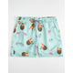 CYA Vice Flamingo Mens Volley Shorts