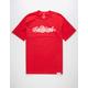 DIAMOND SUPPLY CO. Giant Script Mens T-Shirt