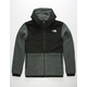 THE NORTH FACE Denali 2 Mens Jacket