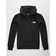 THE NORTH FACE Jumbo Half Dome Mens Hoodie