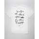 SALTY CREW Mapped Mens T-Shirt