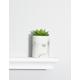 Marble Succulent Planter