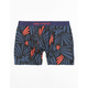 PAIR OF THIEVES Launch Mens Boxer Briefs