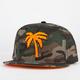 BLVD Tree & War Mens Snapback Hat