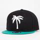 BLVD Venice Mens Snapback Hat