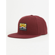 VANS Grizzly Mountain Mens Snapback Hat