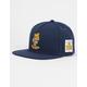 CAYLER & SONS x Garfield King Mens Snapback Hat