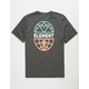ELEMENT Terra Mens T-Shirt